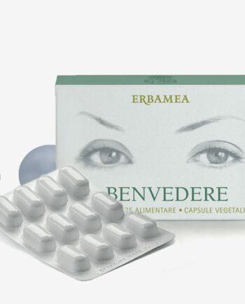 Benvedere