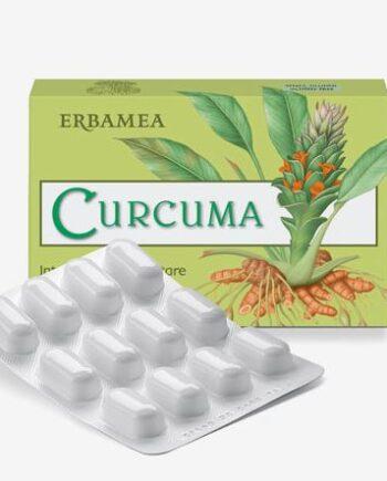 Curcuma